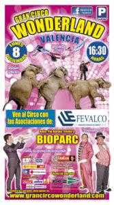 ESCAPARATE circo 2014