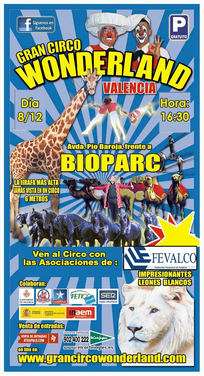 Como en años anteriores las Asociaciones de FEVALCO organizamos una sesión exclusiva de Circo a un precio muy asequible, este año de nuevo los comercios asociados de ACOMEX vamos a…