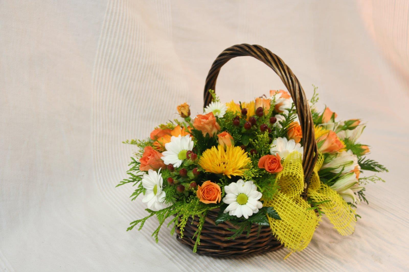 Regala una preciosa cestita de flor silvestre de temporadapor sólo 28 €, incluidos los portes a domicilio en Valencia y tarjeta con dedicatoria. Puedes hacer tu pedido por teléfono llamando al:…